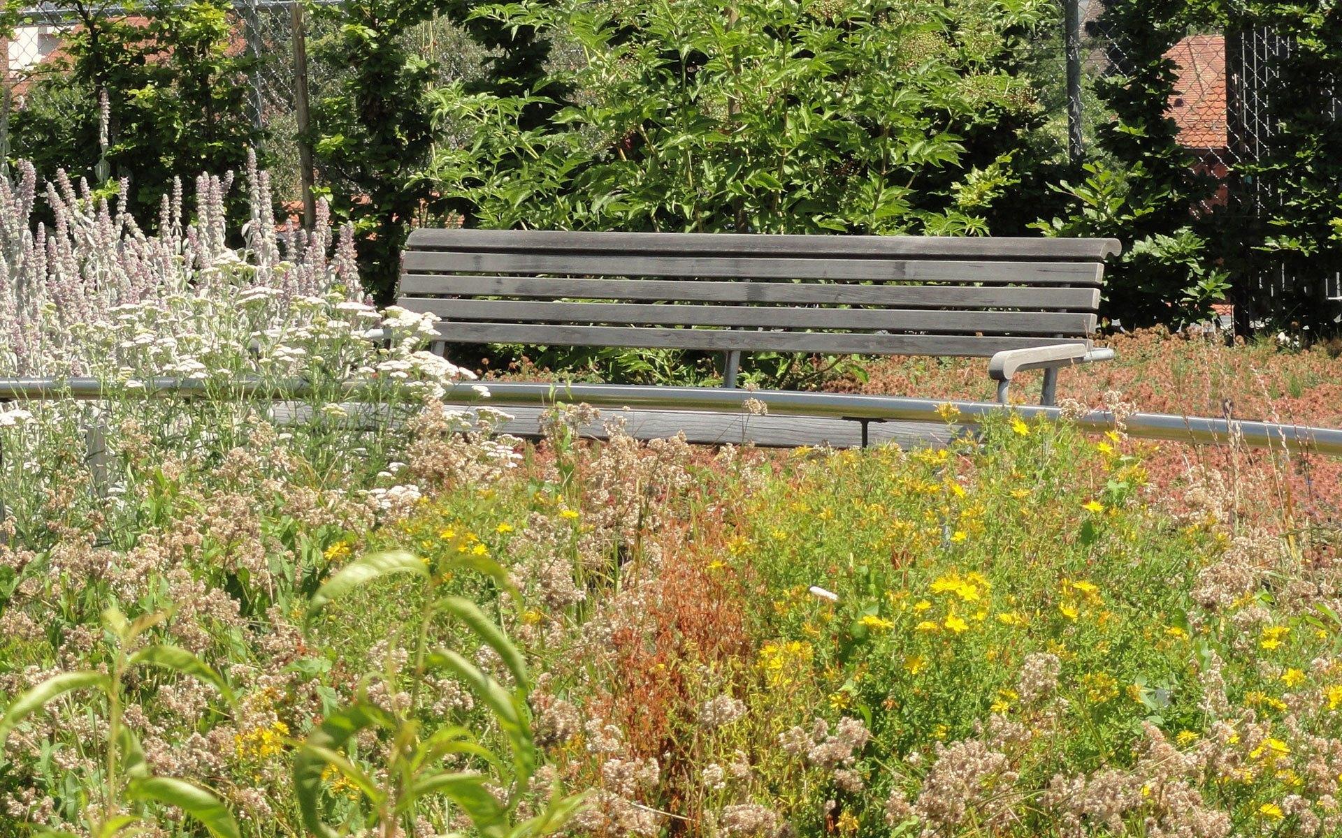 Garten für Demenzkranke