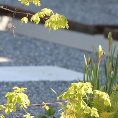 Garten Mondrian